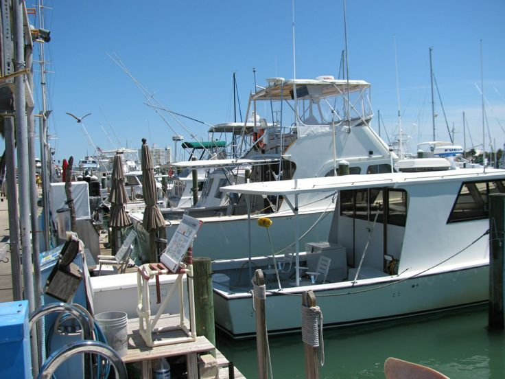 17 best images about clearwater beach marina and harbor on for Clearwater charter fishing