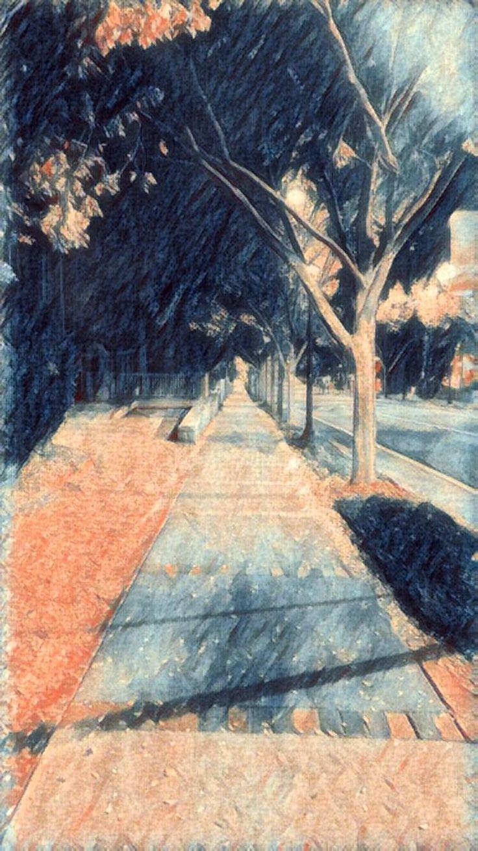 Filtered photo of tree lined street at 3am http://ift.tt/2BmXYkD