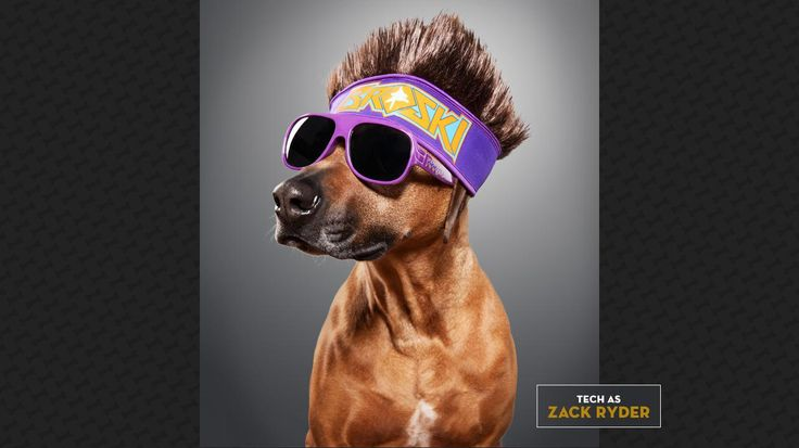 Tech as Zack Ryder: Woo Woo Woo, CHEW TOY IT!  Check out more: http://wwe.me/lkyaE