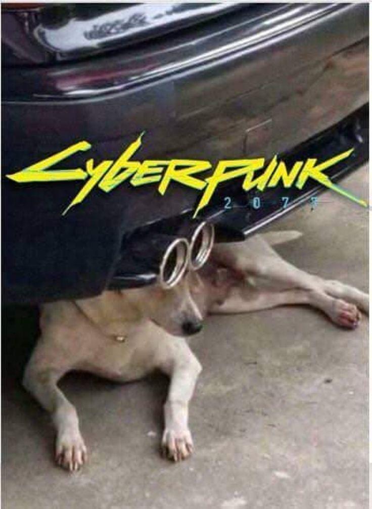 Cyberpunk 2077 repost   Memes engraçados, Meme engraçado ...