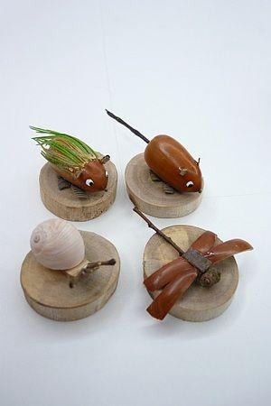 acorns and shells craft: animals