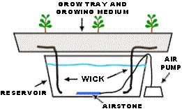 A general diagram of hydroponics systems