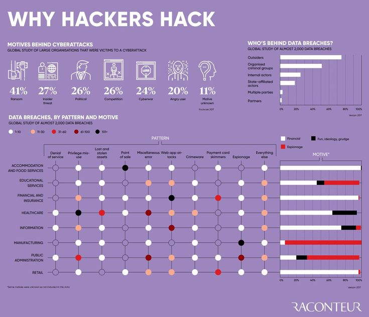 Why Hackers Hack - #infographic