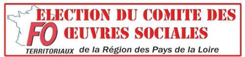 FO - Loire Atlantique: Résultats des élections du COS au Conseil Régional...