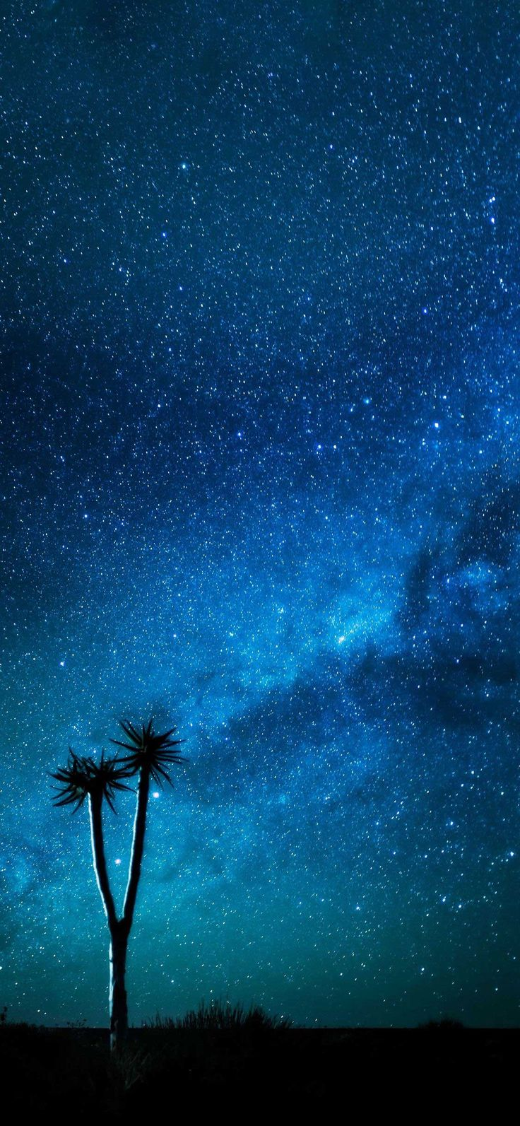 Hd Wallpapers For Iphone Wallpaper iphone various II ...