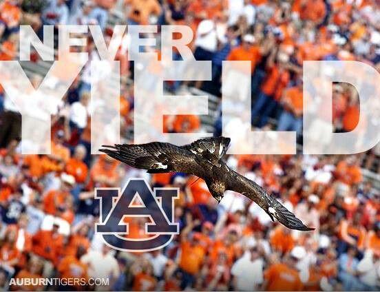 Never Yield Auburn Football