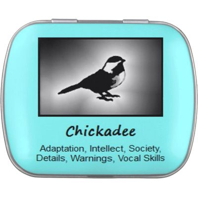 Chickadee Bird Meaning, Spirit Guide