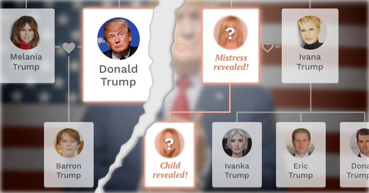 You won't believe what I discovered in  The Trump family tree!