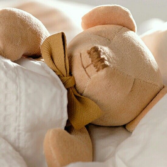 Cubby the organic Teddy bear perfect for babies,  chemical free,  cuddly and cute. Find him at www.maudnlil.com.au 🐻🐻🐻
