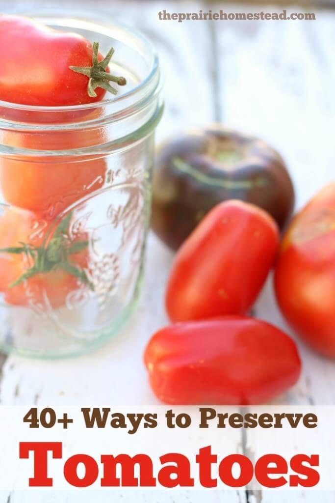 40+ Ways to Preserve Tomatoes
