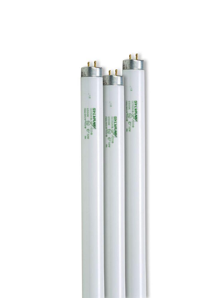 SunLite® T-8 Bulbs   Grow Light Bulbs   Gardener's Supply