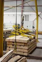 MADEX: Madera Tratada para Exterior: Características de la madera de pino