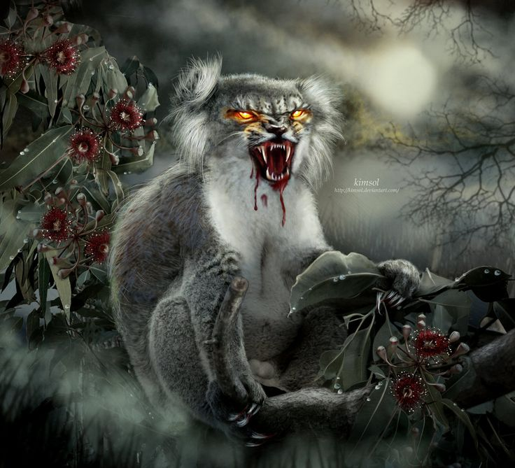 Drop Bear, Kimsol @ DeviantArt