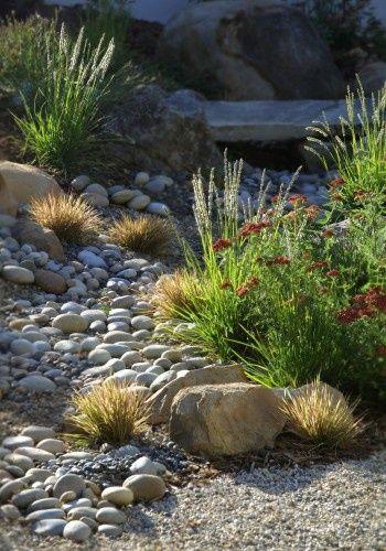 Dry Stream Bed. Use any of our Lomandra cultivars, Ficinea nodosa http://www.bluedaleplantsonline.com.au/shop/Sedges-&-Water-Plants/Knobby-Club-Rush/19/ or Poa 'Eskdale' http://www.bluedaleplantsonline.com.au/shop/Designer-Grasses/ESKDALE/12/ to achieve a similar effect.