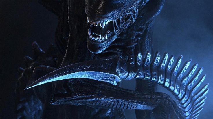 Parmi les grosses sorties cinéma de l'année prochaine, il faudra aussi compter sur Alien Covenant, la suite directe de Prometheus. Attendue pour le 17 Mai prochain dans les salles obscures françaises, le film réalisé par Ridley Scott se déroule dix ans après les évènements du précédent volet et sera centré sur l'équipage du Covenant, un vaisseau spatial de la société Weyland Yutani qui explore des planètes. Les membres du vaisseau vont tomber sur celle où le Prometheus a atterri dix ans plus…