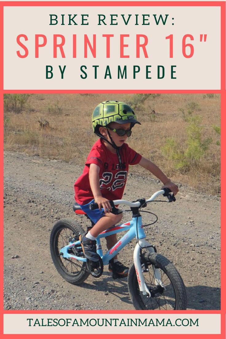 Biking For Families Bike Reviews Kids Bike Bike