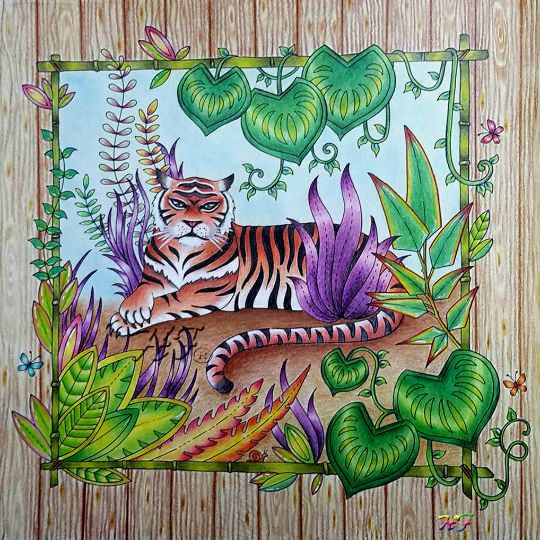 Magical Jungle Coloring Book Finished Pages Beni Johnson