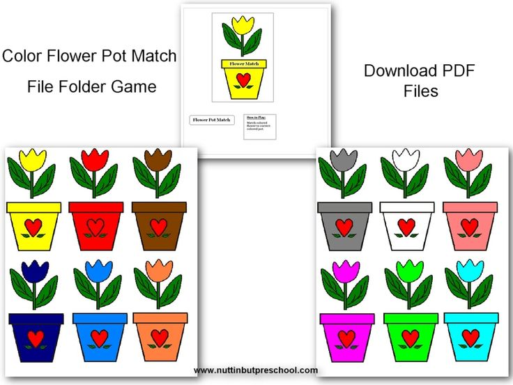 FlowerPot Pic, free download