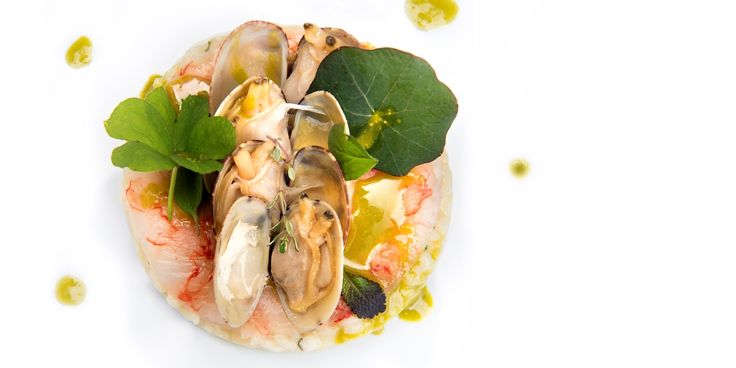 Vialone Nano risotto cremaed with lemon jam, raw prawns, clams and Bronte…