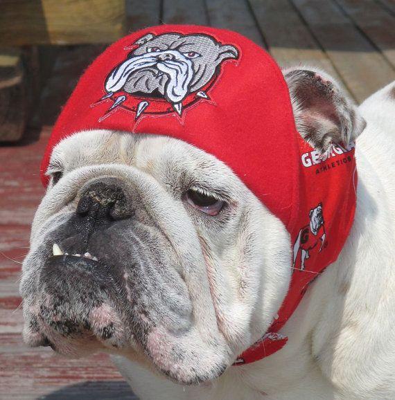 Sombrero UGA de orden para el Bulldog Inglés Divertido perro