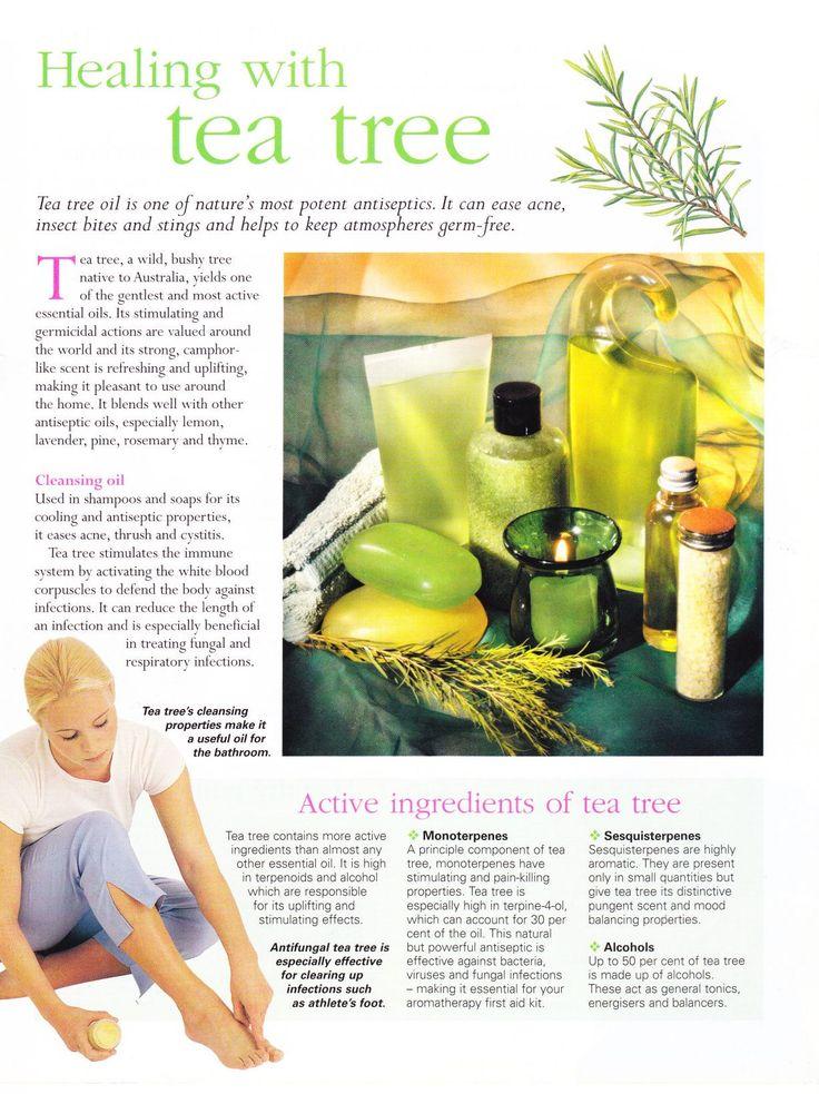 Healing with tea tree
