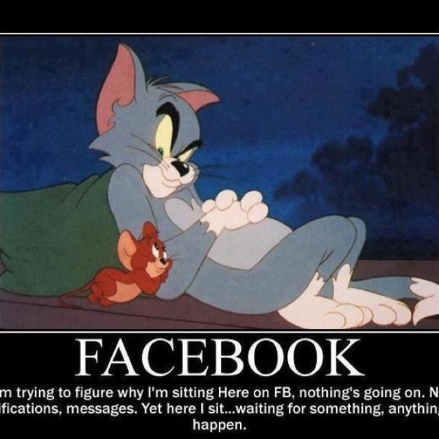 FB lol