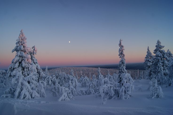 #Levi (Finnish #Lapland) in January 2014. Most freezing and beautiful spot to shoot.  © Marika Lindström