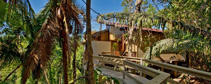 One day I hope to stay in a rainforest treehouse like this one in Belize.  What an amazing place!