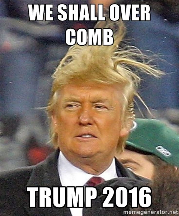 16 Donald Trump Hair Memes So Funny You'll Actually Be Grateful He's Running For President