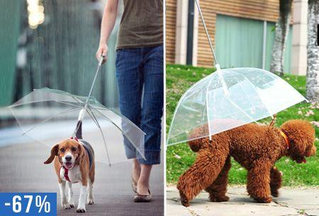 Hondenparaplu riem nu slechts €9,95 | Laat je trouwe viervoeter niet in de regen lopen! #regen #paraplu #huisdier #hond