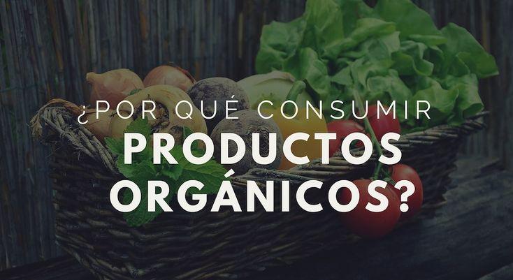 Los alimentos orgánicos, aunque más caros, son la opción saludable y sensata. Sus beneficios superan con creces a sus competidores transgénicos.