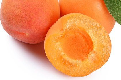 They are one of the best sources for organic iron, copper, and cobalt making them very beneficial for anemia, digestive disorders, and reproductive health. Apricots are highly beneficial for autoimmune disorders such as chronic fatigue syndrome, rheumatoid arthritis, fibromyalgia, asthma, lupus, colitis, IBS, and PCOS.