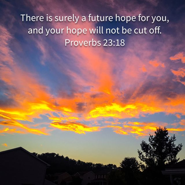 For surely there is an end; and thine expectation shall not be cut off. Proverbs 23:18 KJV