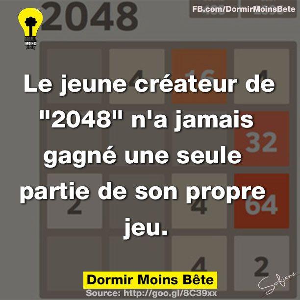 """Le jeune créateur de """" 2048"""" n'a jamais gagné une seule partie de son propre jeu."""