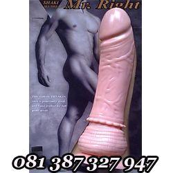 Alat Bantu Sex Wanita Penis Tempel Berotot  Alat Pemuas Nafsu Seksual Wanita Masturbasi call 082300102518 BBM 266A107A - http://tokoalatbantusex.info/alat-bantu-sex-wanita-penis-tempel-berotot/