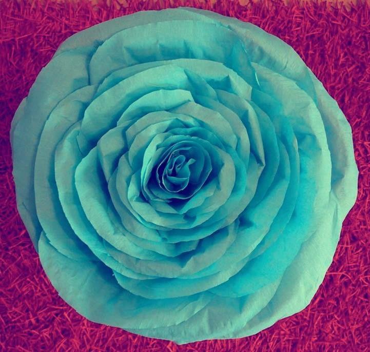 Huge paper rose
