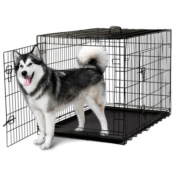 "XXL Dog Crate Folding Pet Kennel Collapsible Metal Cat Rabbit Cage Divider 48"" #XXLDogCrate"
