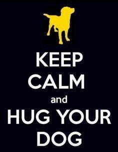 Keep calm and hug your dog #doglover