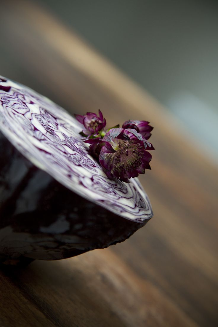 Cabbage&Flowers #FoodPhotography