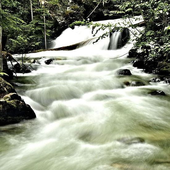 Becky McGuire's photo of Springer Creek, Slocan British Columbia Canada.  Available in Prints, Framed Prints or Greeting Cards.