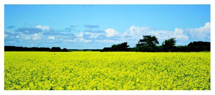 Estonia summer, colours #COLOURFULESTONiA