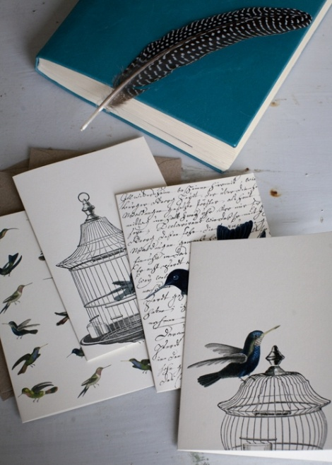 Natural History :The Origin of Style Greeting Cards