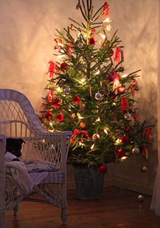 Julgran från Underbara Clara