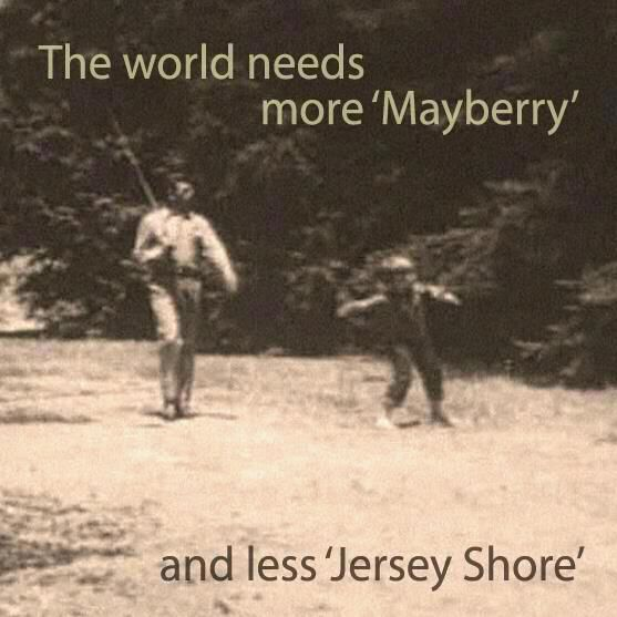 I love this show!: Amenities, Jersey Shore, Quote, Wisdom, Funny, Andy Griffith, Movie, So True, Living