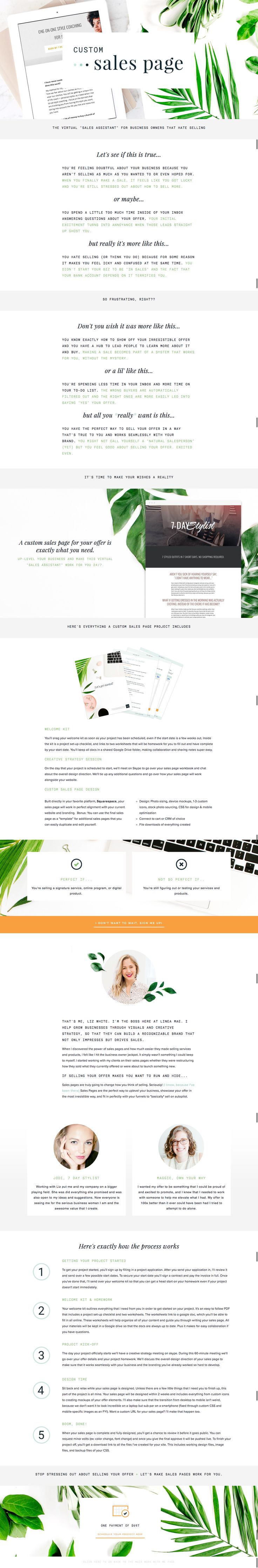 20 best sales page design images on pinterest design websites sales page template sales page ideas sales page layout website layout fandeluxe Image collections