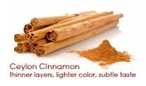 Image result for ceylon cinnamon tree
