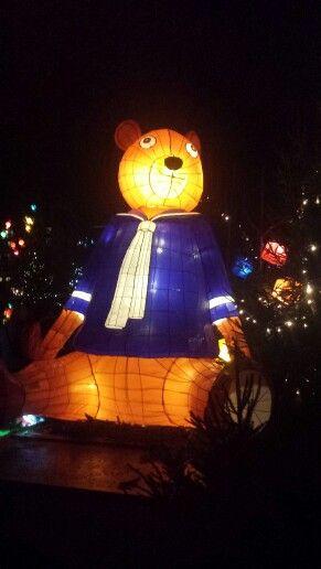 Lanternes de #Metz : Ours géant