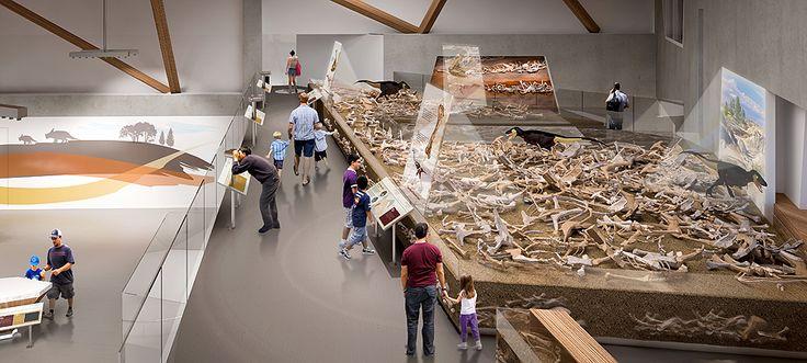 Philip J. Currie Dinosaur Museum, exhibition design by Reich + Petch