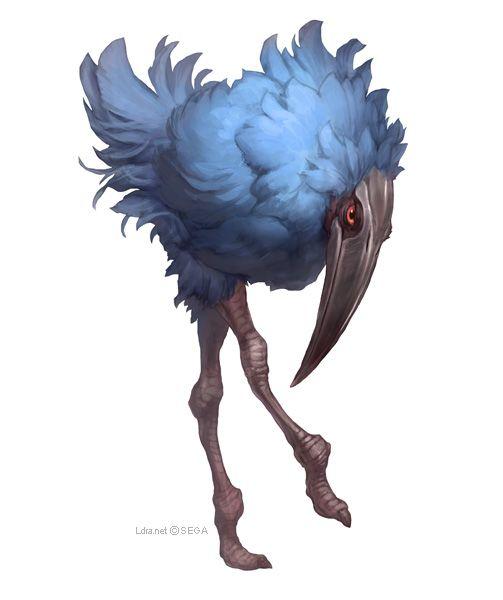 1166 Best Creature-Bird Images On Pinterest