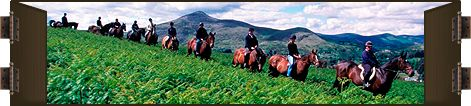 Equestrian Holidays Ireland | Horse Riding Vacations, Horse Riding Activities, and Horse Riding Centres in Ireland | Horseback Riding Establishment Listings
